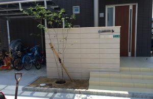 アオダモの木を、、、 山口市 新築外構